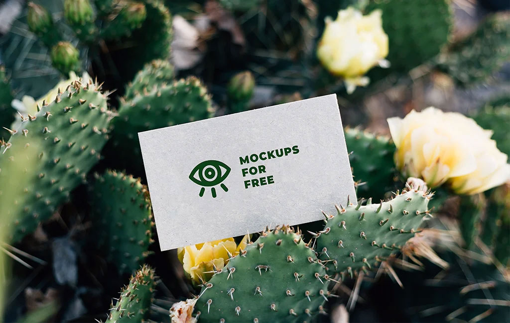Business Card Among Cacti Mockup